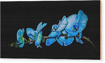 Blue Phalaenopsis Orchid Wood Print by Len Romanick