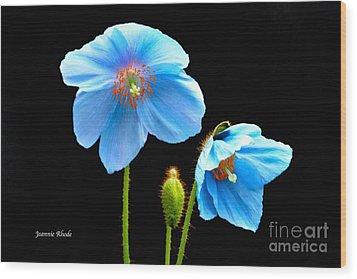 Blue Poppy Flowers # 4 Wood Print