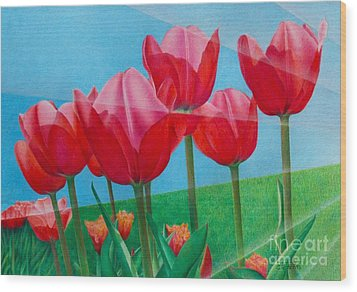 Blue Ray Tulips Wood Print by Pamela Clements
