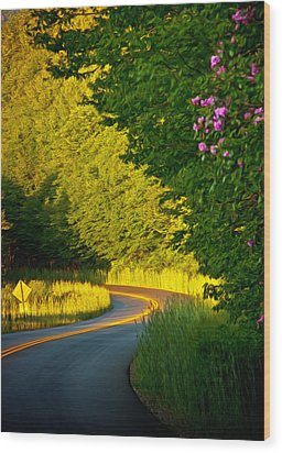 Wood Print featuring the photograph Blue Ridge Afternoon by John Haldane