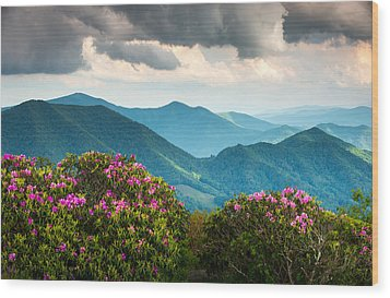 Blue Ridge Appalachian Mountain Peaks And Spring Rhododendron Flowers Wood Print by Dave Allen