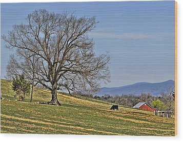 Blue Ridge Farm Wood Print