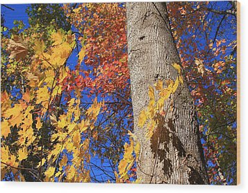 Wood Print featuring the photograph Blue Ridge Parkway Fall Foliage-north Carolina by Mountains to the Sea Photo