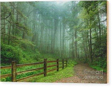 Blue Ridge Parkway - Foggy Country Road And Trees II Wood Print by Dan Carmichael