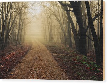 Blue Ridge Parkway In The Fog Wood Print by Maria Jaeger