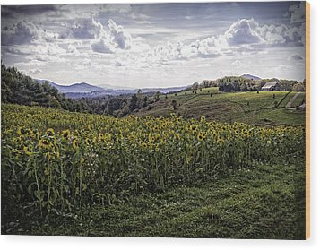 Blue Ridge View Wood Print
