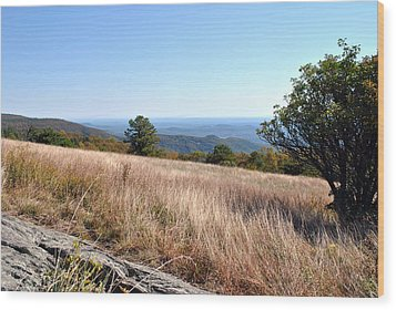 Wood Print featuring the photograph Blue Ridge View by Kelly Nowak