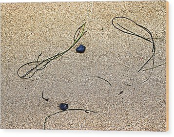 Blue Rocks And Seagrass Wood Print by Bob Wall