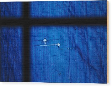 Blue Shade Wood Print by Christi Kraft