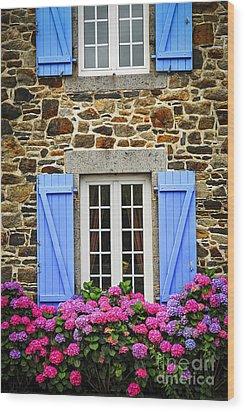 Blue Shutters Wood Print by Elena Elisseeva