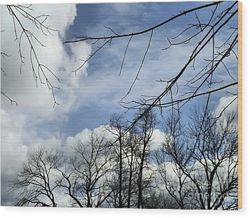 Wood Print featuring the photograph Blue Skies Of Winter by Robyn King
