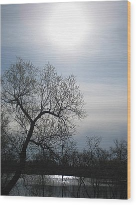 Blue Sky Wood Print by Alicia Knust