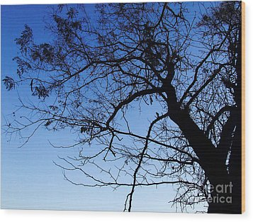 Wood Print featuring the photograph Blue Sky by Andrea Anderegg
