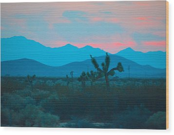 Blue Sky Cacti Sunset Wood Print