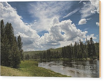 Blue Sky In Yellowstone Wood Print by Edward R Wisell