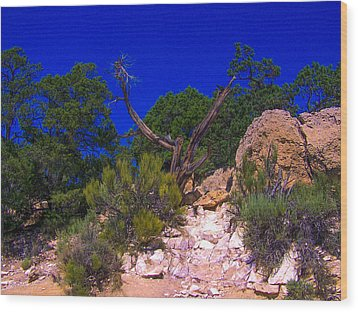 Blue Sky Over The Canyon Wood Print by Dany Lison