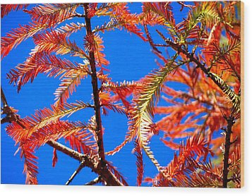 Wood Print featuring the photograph Blue Sky Sunday by David  Norman
