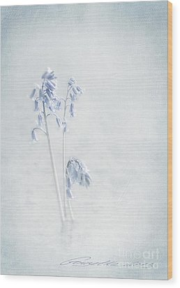 Blue Softness Wood Print by Gouzel -