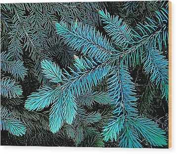 Blue Spruce Wood Print by Daniel Thompson