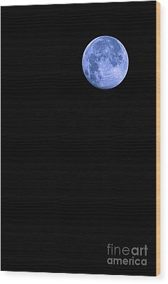 Blue Supermoon Wood Print by Trish Mistric