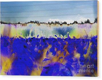 Blue Things Wood Print by Carol Lynch