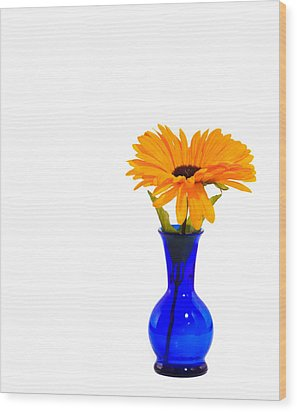 Wood Print featuring the photograph Blue Vase by Cecil Fuselier