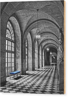 Blue Velvet Wood Print by Nikolyn McDonald