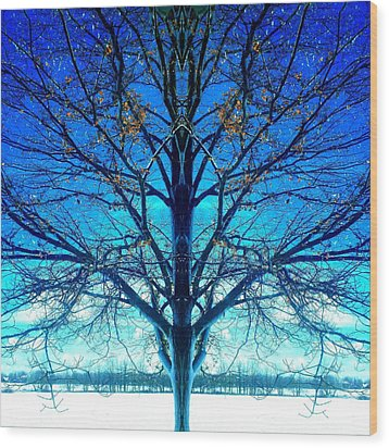 Wood Print featuring the photograph Blue Winter Tree by Marianne Dow