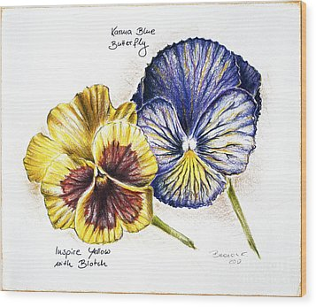 Blue Yellow Pansies Wood Print by Katharina Filus