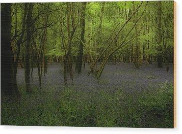 Bluebells Dream Wood Print by Peter Skelton