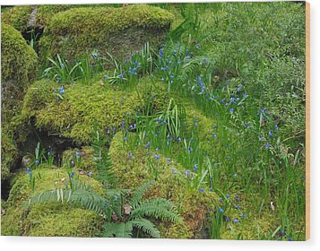 Wood Print featuring the photograph Bluebells  by Marilyn Wilson