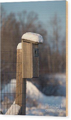 Bluebird House Covered With Snow Wood Print by Linda Freshwaters Arndt