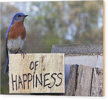Wood Print featuring the photograph Bluebird Of Happiness by John Crothers