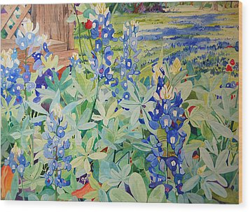 Bluebonnet Beauties Wood Print by Terry Holliday