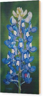 Bluebonnet Buffalo Clover Wood Print by Dee Dee  Whittle