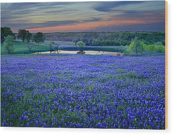 Wood Print featuring the photograph Bluebonnet Lake Vista Texas Sunset - Wildflowers Landscape Flowers Pond by Jon Holiday