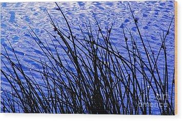 Bluegrass Wood Print