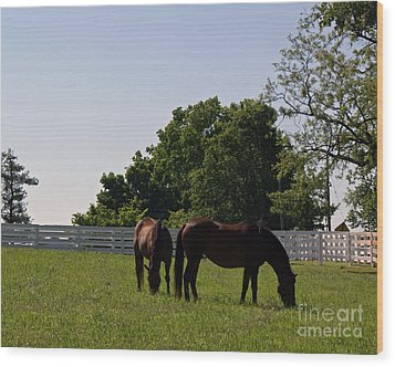 Bluegrass Summer Day Wood Print by Roger Potts