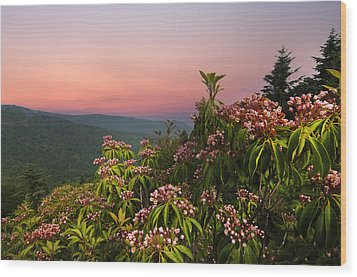 Blueridge Parkway Mountain Laurel Wood Print