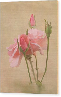 Blushing Pink Wood Print by Angie Vogel