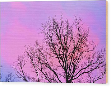 Wood Print featuring the photograph Blushing Sky by Candice Trimble