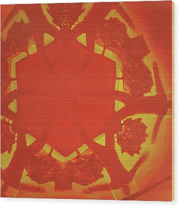 Boards Of Canada Geogaddi Album Cover Wood Print by David Rives