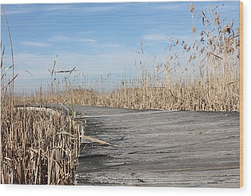 Boardwalk 2 Wood Print by K Hines
