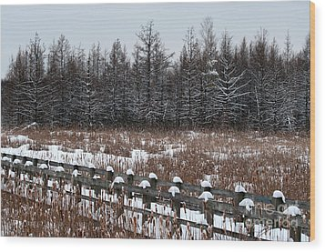 Wood Print featuring the photograph Boardwalk Series No1 by Bianca Nadeau