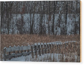 Wood Print featuring the photograph Boardwalk Series No2 by Bianca Nadeau