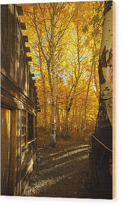 Boat House Among The Autumn Leaves  Wood Print