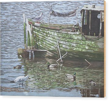 Boat Wreck With Sea Birds Wood Print by Martin Davey