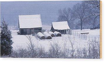 Bobby's Barn Wood Print by Garry McMichael