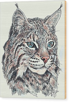 Wood Print featuring the drawing Bobcat Portrait by VLee Watson