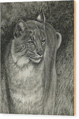 Bobcat Emerging Wood Print by Sandra LaFaut
